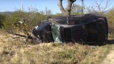 Двама пострадаха при жесток сблъсък заради коне на пътя