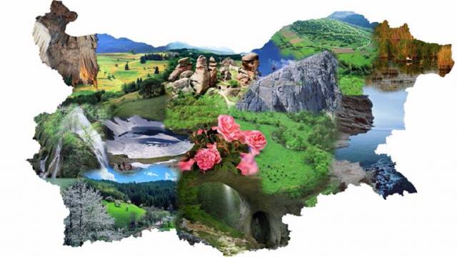 bulgariq
