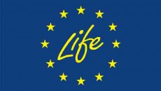 Life Logo 300 dpi