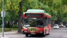 avtobus dame_37