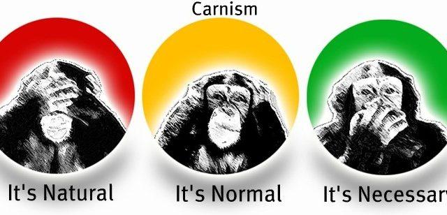 Знаете ли какво е карнизъм? (ВИДЕО)