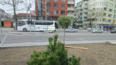 gradinkaa (3)