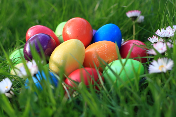 images_Images_easter-sim-2