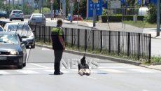 Фолксваген помете жена на зебра в Пловдив