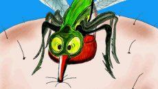 Кои са храните, които привличат комарите?