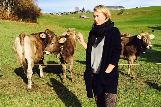 kravi