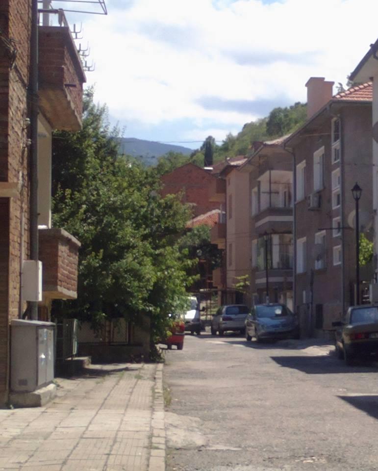 Младеж застреля котка в Асеновград