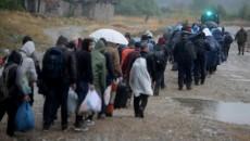 migranti (1)