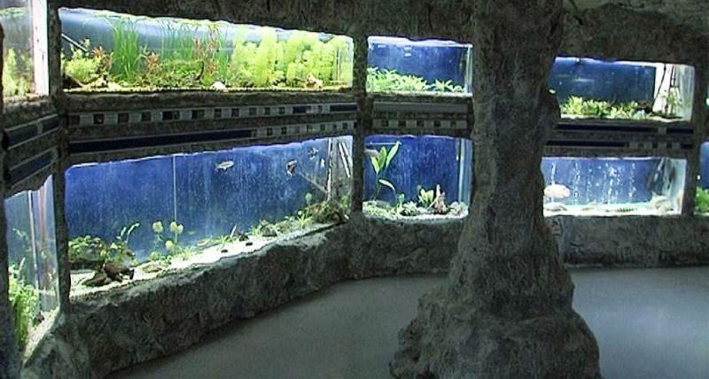 muzej_priroda