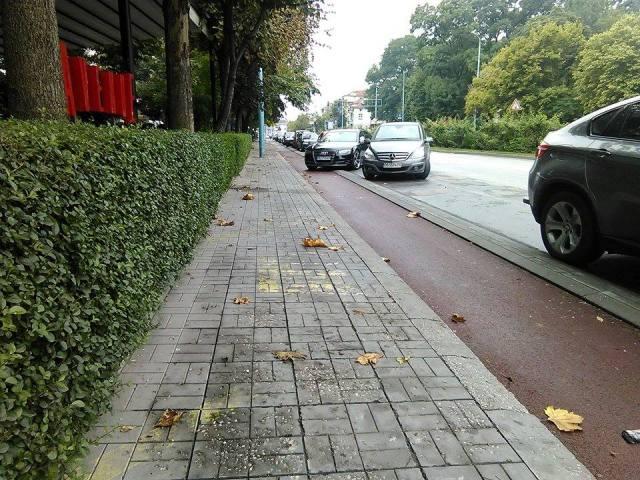parkiral_idiot (5)