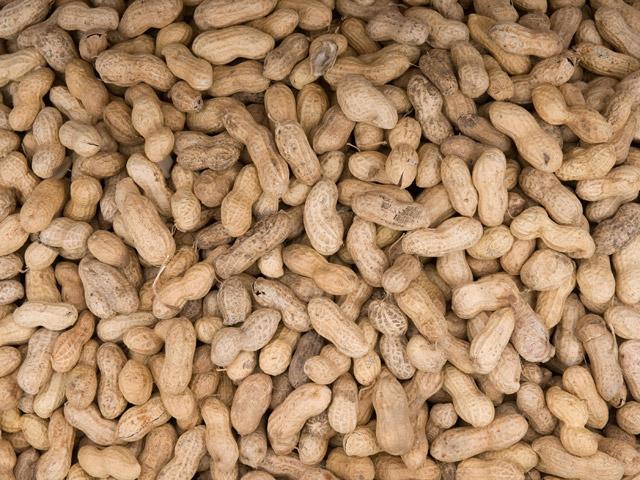 peanut-shells1