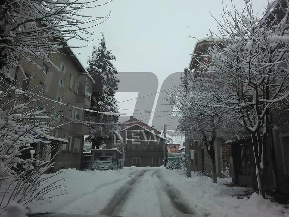 sniag Pzk1701 (16)