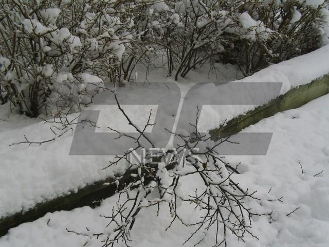 sniag pld1701 (7)