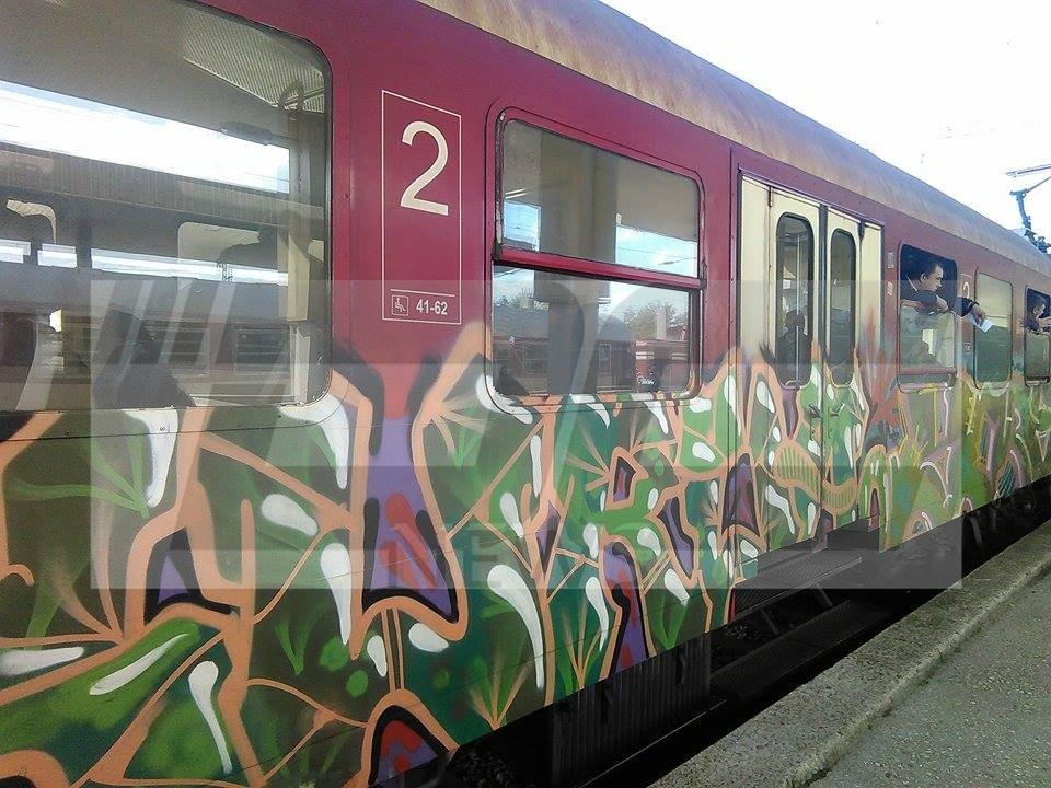 vlakove (1)