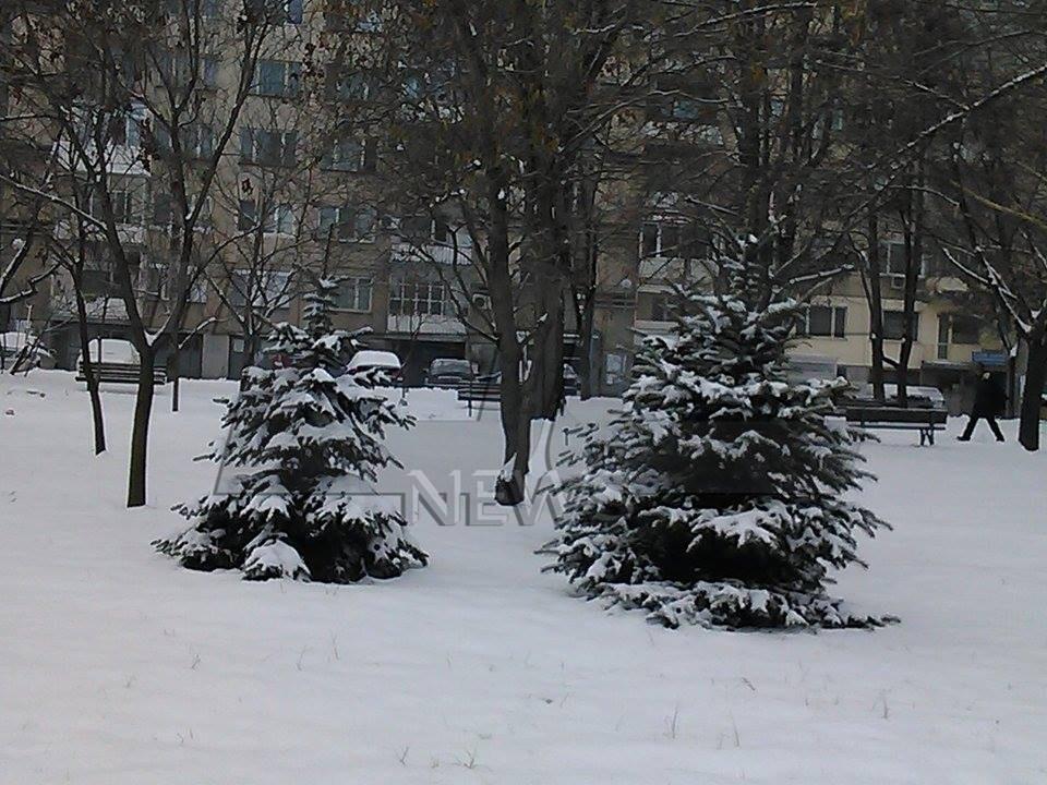 vreme sniag (3)