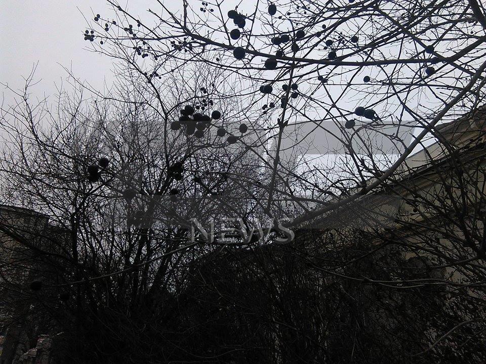 vreme zima (1)