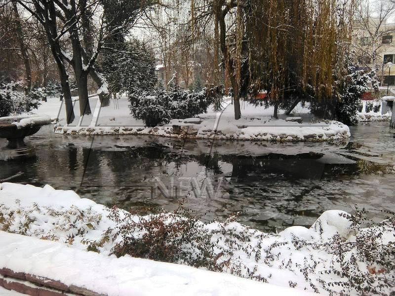 zima_2016 (27)
