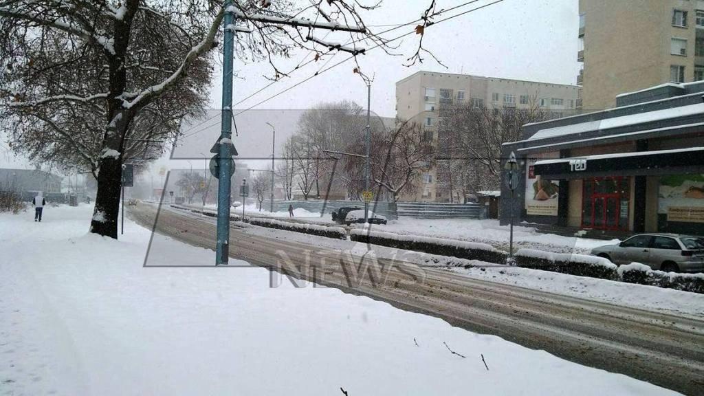 zima_lovdiv_2017-5